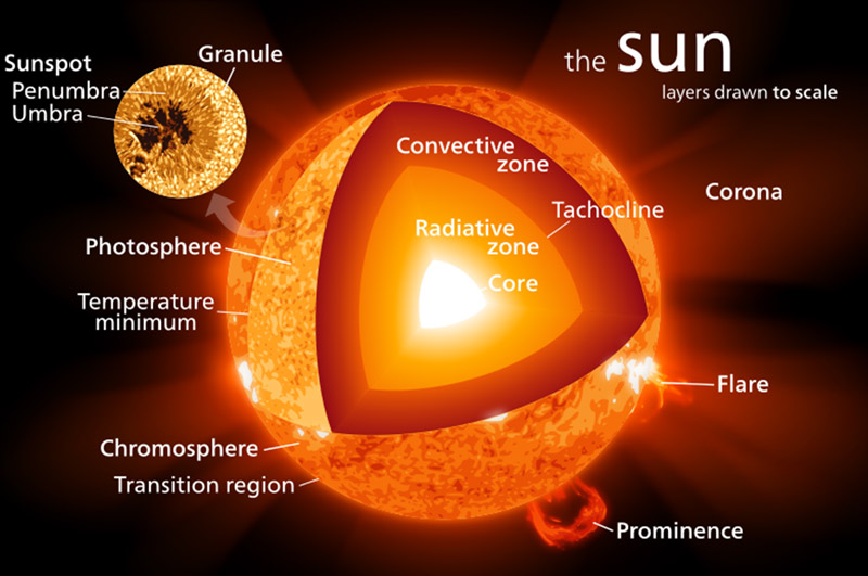 Schematic diagram for sections of the sun